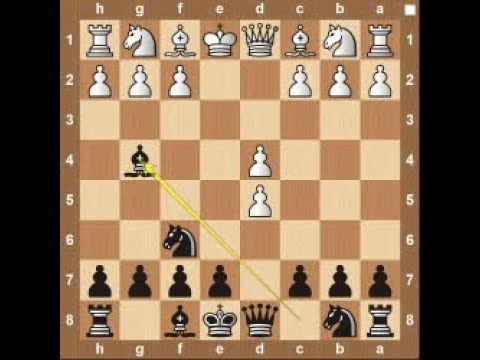 Portuguese Gambit - Chess Opening