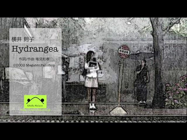 MegatonPanchos / Hydrangea