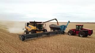 2017 Harvest  - South Australia