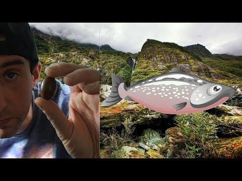 Nun kann ich dank der Pille unter Wasser atmen  Bruno Alex Patrick WG Folge 46