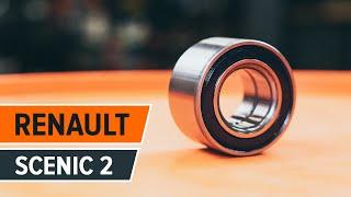 Hvordan skifte Bakre hjullager på RENAULT SCENIC 2 | Autodoc