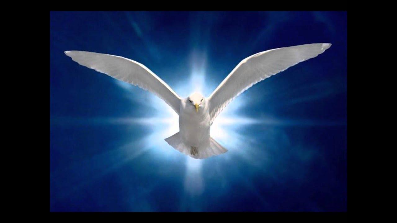 m resultado de la imagen de Santo Espiritu