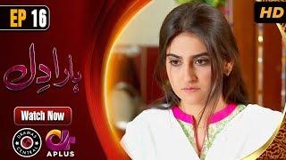 Pakistani Drama | Haara Dil - Episode 16 | Aplus Dramas | Danish Taimoor, Hiba Bukhari