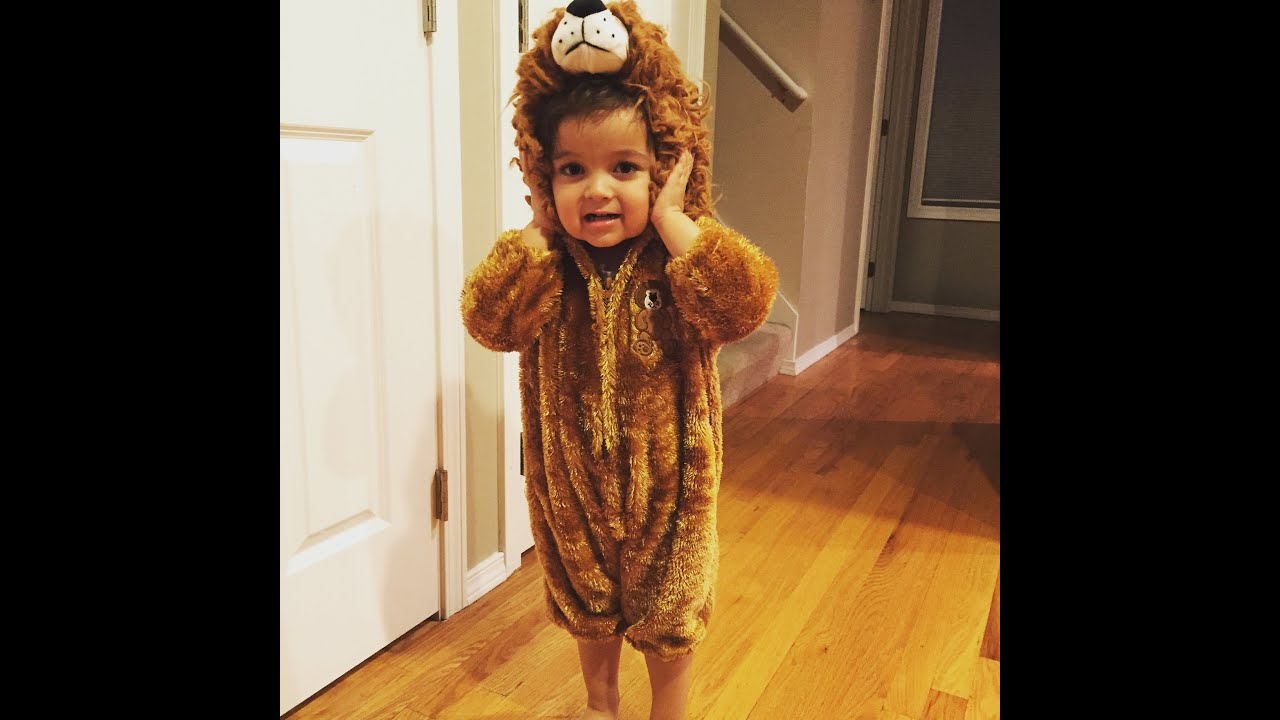 Halloween Lion Costume For Toddler - Super Cute!  sc 1 st  YouTube & Halloween Lion Costume For Toddler - Super Cute! - YouTube