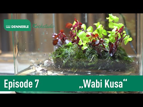 WABI KUSA! Ein Blumengesteck aus Aquariumpflanzen | Aquarium nach Rezept Episode 007