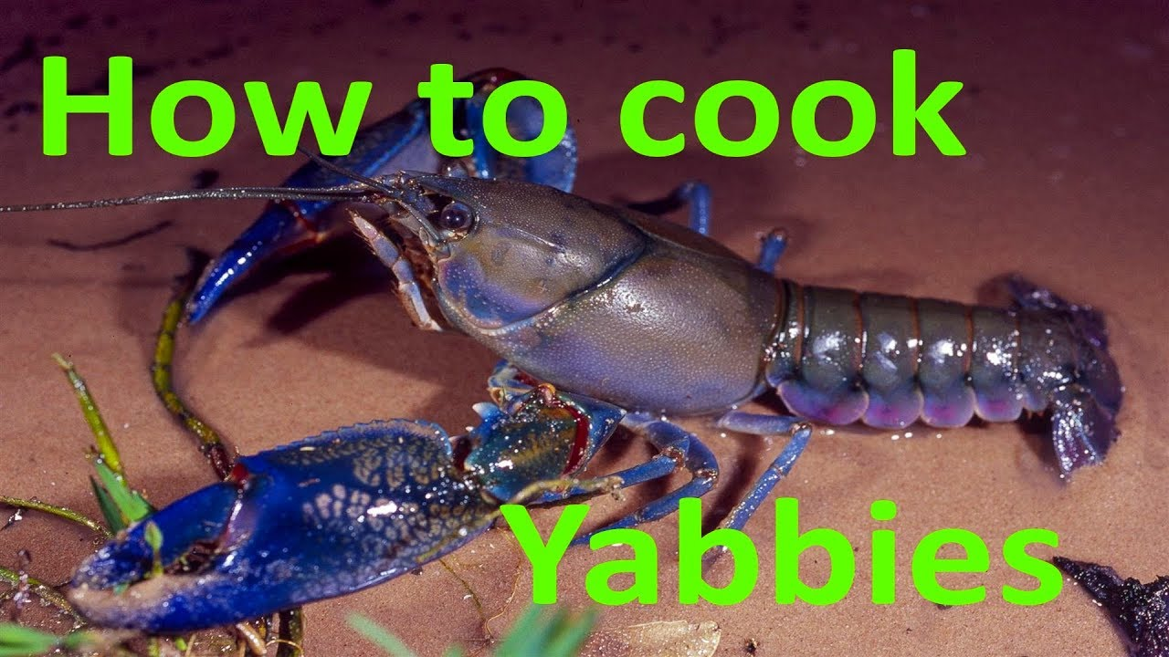 How To Cook Clean And Eat Yabbies Youtube