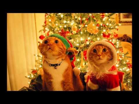 Martin Garrix - Anibells (Pete Logan & Chris Davies Christmas Edition)
