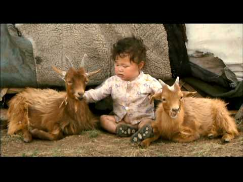 Babies Theatrical Trailer