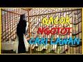 Kacer Gacor Roll Tembak Ngotot Cari Lawan Cocok Buat Pancingan Yang Susah Bunyi  Mp3 - Mp4 Download