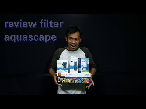 Review Macam-macam Filter Aquarium