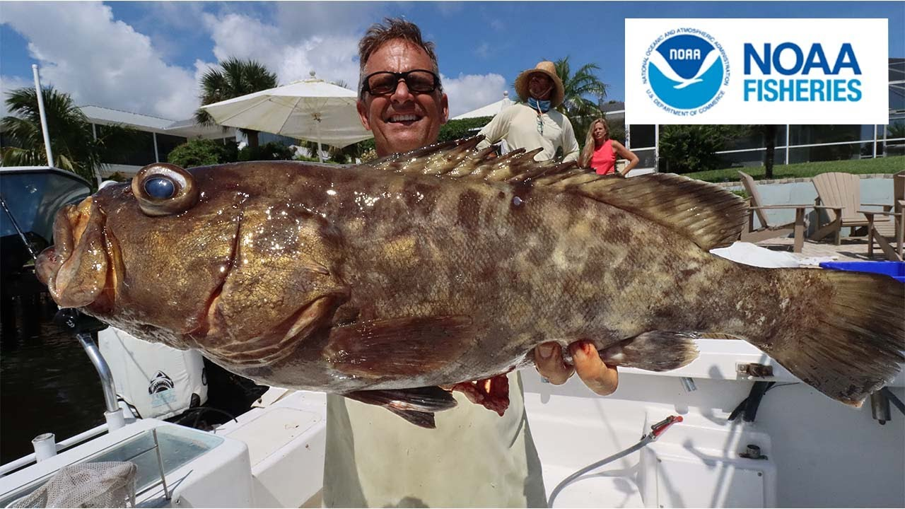 NOAA fisheries came on our BOAT…. Commercial fishing