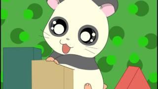 Hamtaro - Panda