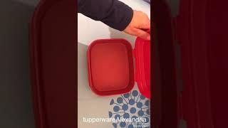 sweet box small tupperware