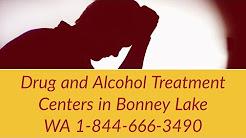 Drug and Alcohol Treatment Centers Bonney Lake WA 1-844-666-3490