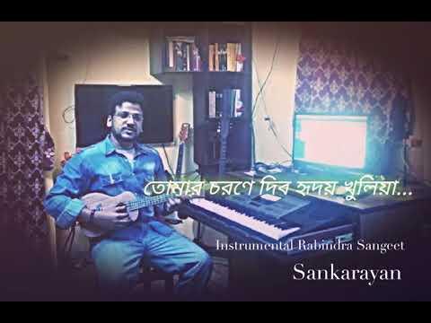 koto-baro-bhebechhinu-|-sankarayan-|-rabindra-sangeet-instrumental-song-|-violin-cover-(nuendo)