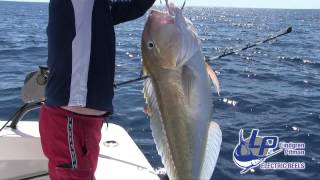 Fishing The Gulf of Mexico with Booby Trap Fishing Team Swordfish, Marlin, Tuna and more