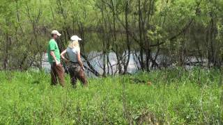 "Atwood Gun Dog Brace Trial 15"" Females May 23rd. 2010"