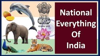 National Everyting of India I National Animal I Fruit I Tree I Song I River I Sports I Reptile