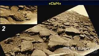 Л.В.Ксанфомалити. Гипотетические признаки жизни на Венере. Часть 2.