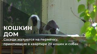 Соседи жалуются на пермячку, приютившую в квартире 20 кошек и собак