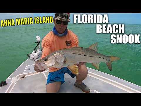 Beach Snook Fishing - Anna Maria Island, FLORIDA - PART 2