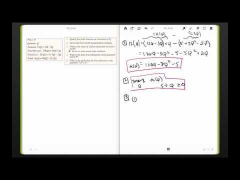 ECON 307 19. SV Optimization in Economics