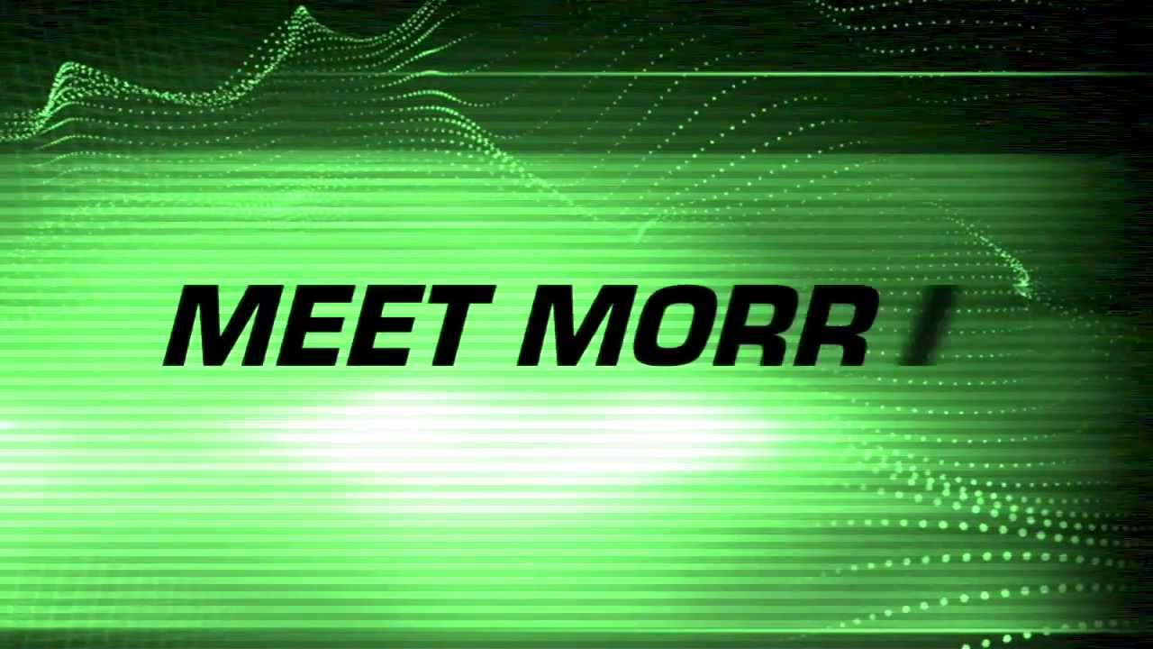 Virtual Mole All Stars: Meet Morris