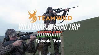 Wild Boar Hunting: Driven Hunting Shooting Skills and Techniques