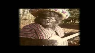 The Twang - Guapa (Official Video)