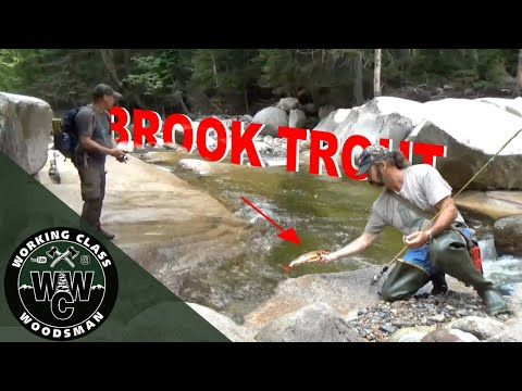 You Should Try This: Fishing For Brook Trout In Pristine White Mountains