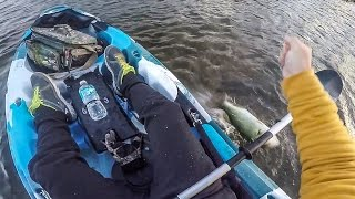 How I Lost a Nice Bass