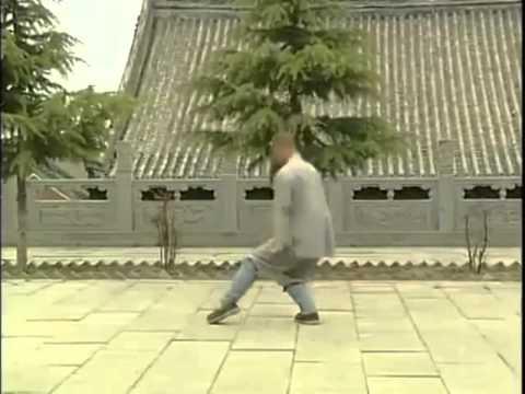 Shaolin Zhaoyang Quan. (少林照陽拳) Forma Boxeo de Zhaoyang.