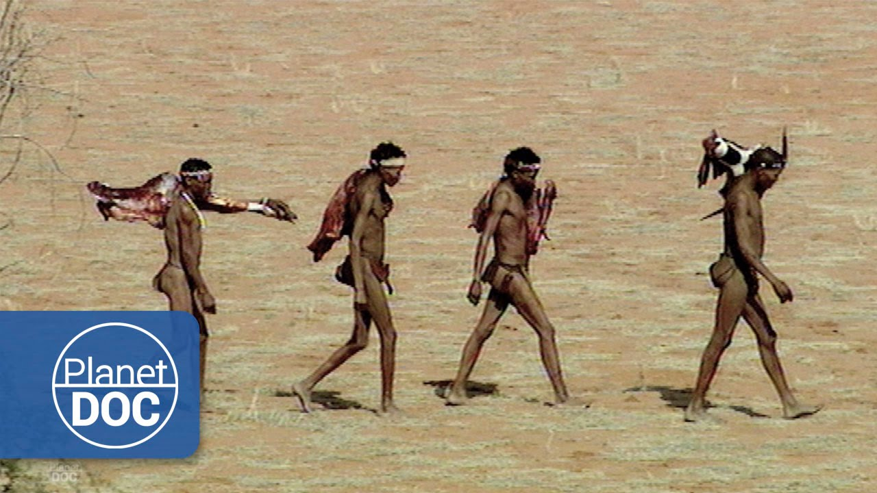 Kalahari Bushmen  African Tribes - Youtube-1506