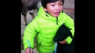ילד בן 3 מגן בחירוף נפש על עז בסכנת שחיטה