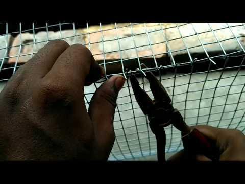 How to make bird's cage ( budgies ke Lia cage kaise banay )