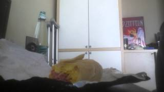 [asmr #46] Whispering/eating Sounds Of: Breakfast Burrito