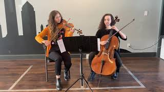Violin and cello cover of willow by Taylor Swift