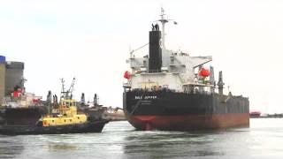 Port Adelaide Shipping _ (359) Bulk Jupiter.