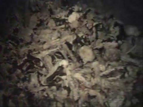 BARABRA PIT-Biggest secret mass grave of the communist regime in Yugoslavia