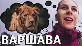 Что посмотреть в Польше? Варшавский зоопарк