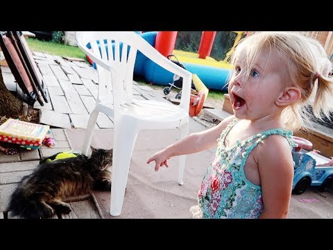 BABY REACTS TO CAT