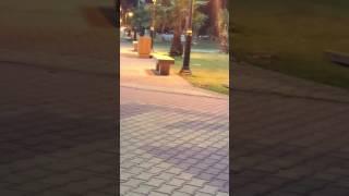 بالفيديو .. شاب يفحط بسيارته داخل حديقة أبها .. والمرور : يلاحقه