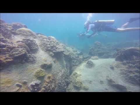 Scuba Diving at Red Rock, Koh Tao, Thailand