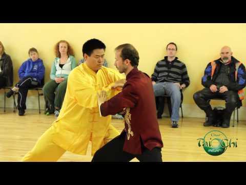 Grandmaster Wang Hai Jun & Irish Students -  World Tai Chi Day 2014
