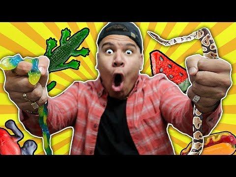 GUMMY FOOD VS REAL FOOD! *Eating Gross Giant Snakes* BEST GUMMY REAL FOODS