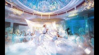 Шикарный выход невесты, роскошный танец молодоженов в сопровождении райских птиц из группы Vip Dance