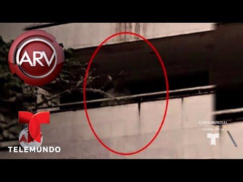 Aseguran que este es el tasma de Pablo Escobar  Al Rojo Vivo  Telemundo