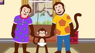 Potty Training - Potty Monkey | Monkey Learns to Potty!