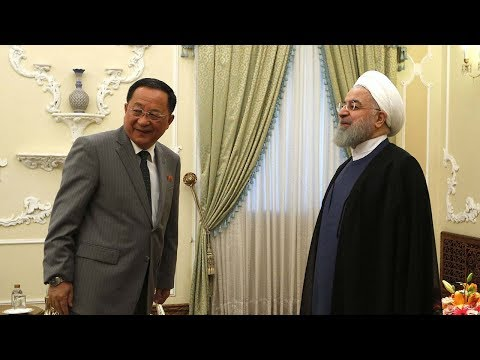 Iran's Rouhani hosts DPRK's Ri Yong Ho in wake of fresh US sanctions