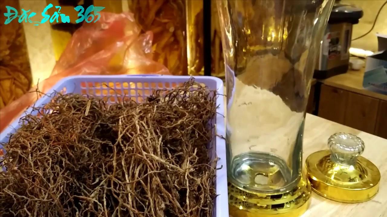 Cách Ngâm Rượu Rễ Cây Xuyên Đá – Đại Bổ Dương